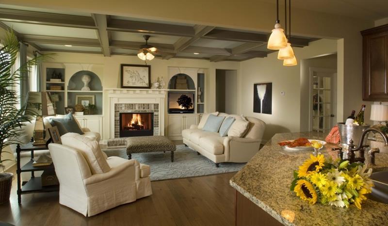 24 Elegant Living Room Designs-23