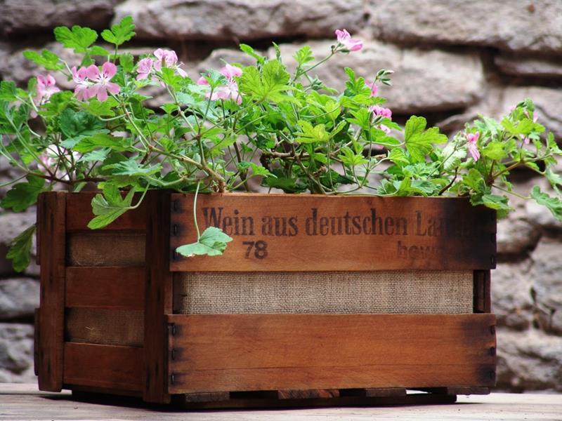 20 Unique and Inspirational Flower Pot Ideas-8