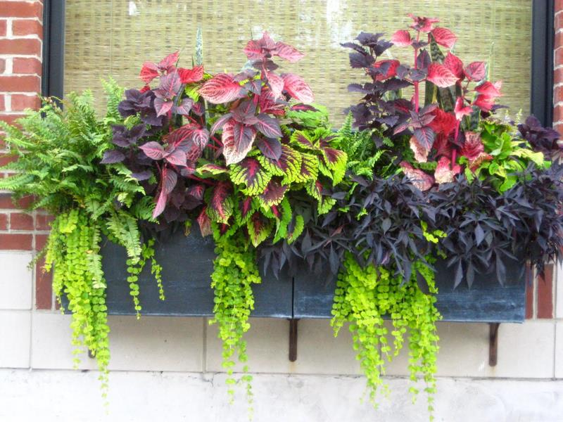 21 Beautiful Flower Box Design Ideas-11