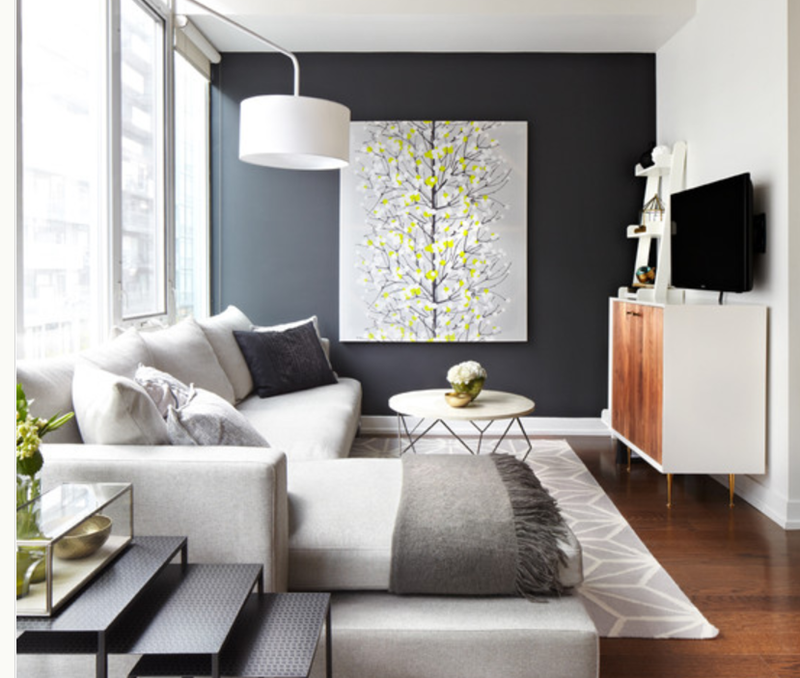 24 Living Room Designs With Accent Walls-5