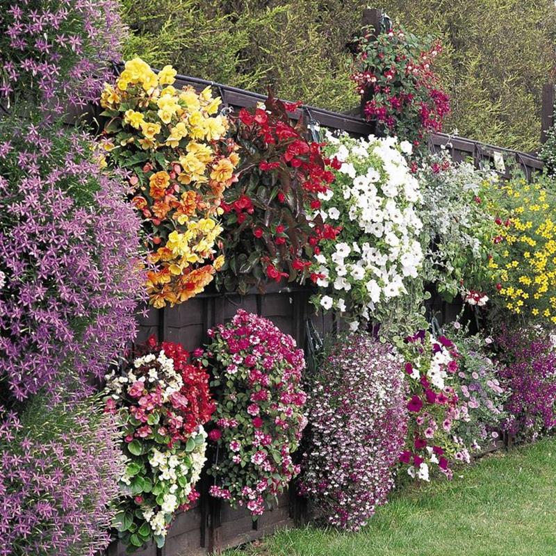 17 Charming Fence Planter Ideas for Your Home-3