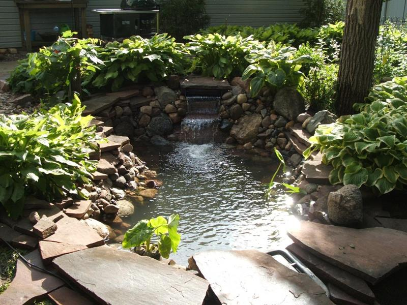 image named 18 Wonderful Ideas for a Garden Pond title