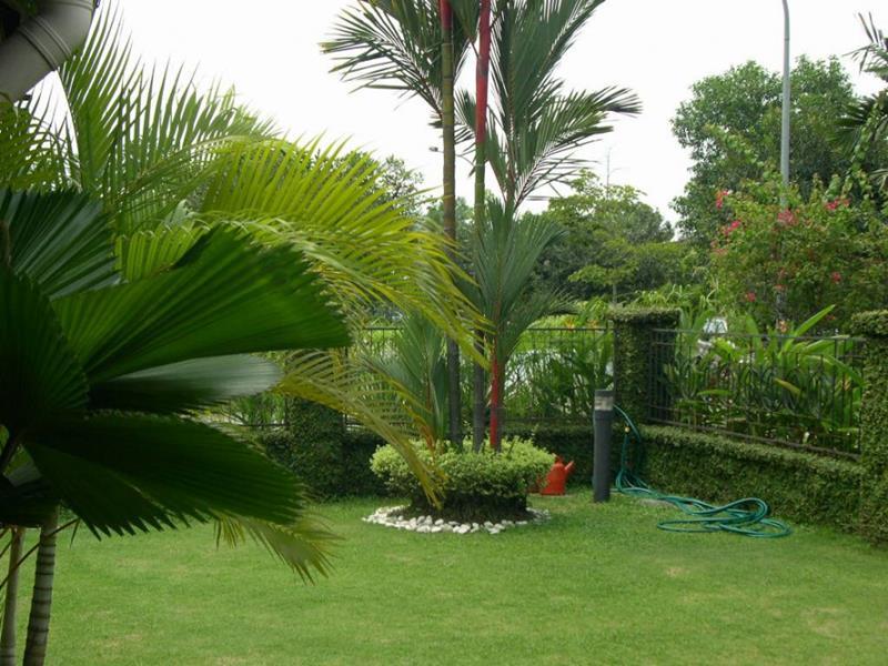 19 Backyards with Amazing Landscaping-14