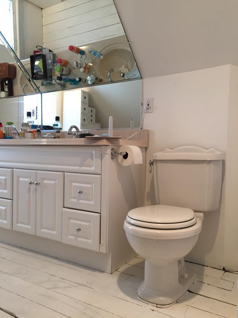 14 Pictures of a Stunning Bathroom Makeover-2