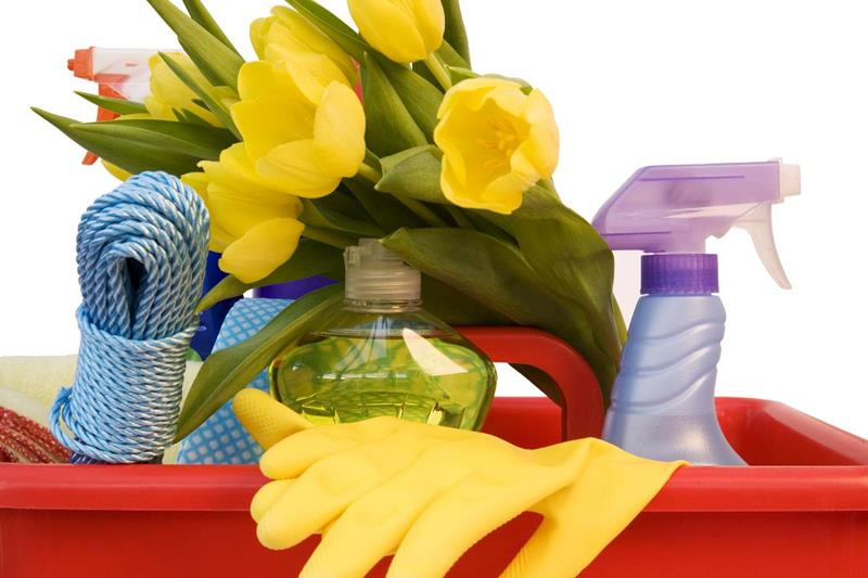 image named 20 Awesome Hacks for Your Annual Spring Cleaning title