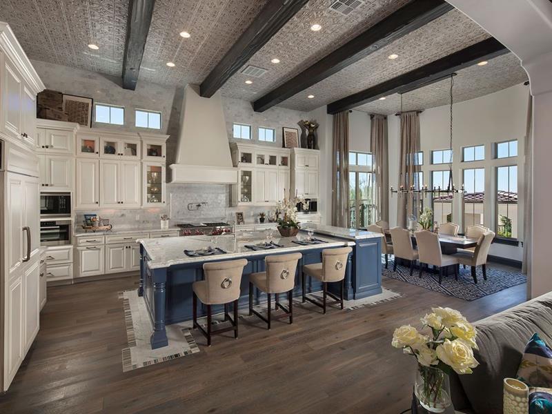 image named 20 Amazing Luxury Kitchen Designs 13